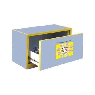 Armoire de sécurité 30 minutes - 60 L à tiroir - Trionyx 7032T
